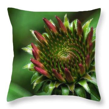 Coneflower Close-up Throw Pillow