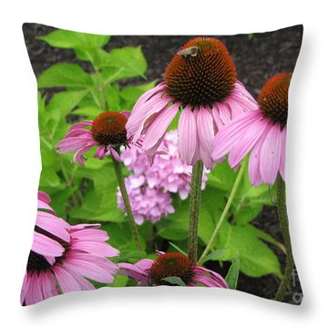 Throw Pillow featuring the photograph Coneflower With Bee by Joan Hartenstein