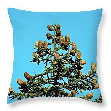 Throw Pillow featuring the photograph Cones by Nick Kloepping