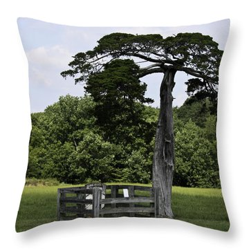 Confederate Grave Of Lafayette Meeks Appomattox Virginia Throw Pillow by Teresa Mucha