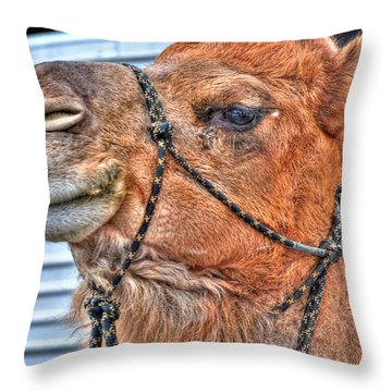 Confidence  Throw Pillow by Michael Frank Jr