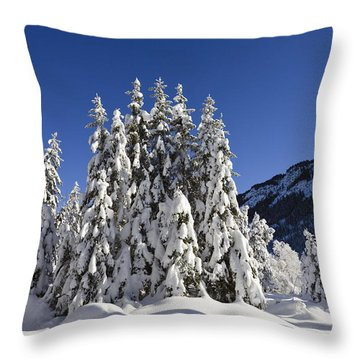 Coniferous Forest In Winter Throw Pillow by Konrad Wothe