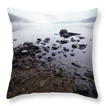 Connecticut Rocks Throw Pillow by Karol Livote