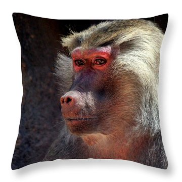 Throw Pillow featuring the photograph Contemplation by Jo Sheehan