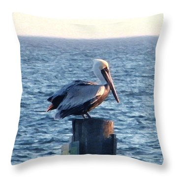 Throw Pillow featuring the photograph Content by Brian Wright