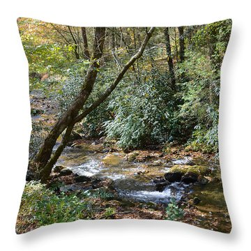 Throw Pillow featuring the photograph Cool Creek by Margaret Palmer