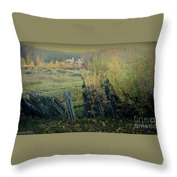 Colorado Colors Throw Pillow