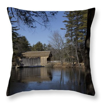 Cool Winter Morning Throw Pillow