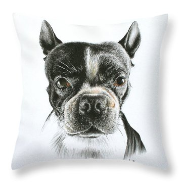Throw Pillow featuring the drawing Cooper by Mike Ivey