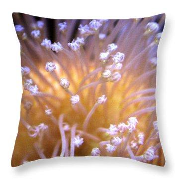 Coral 3 Throw Pillow