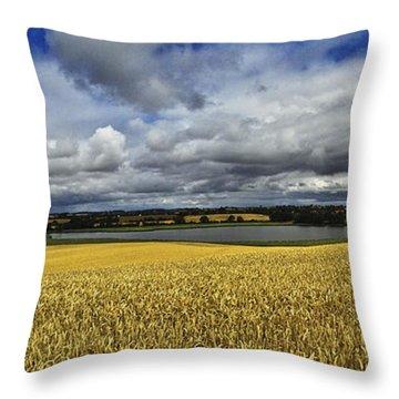 Corn Field Panorama Throw Pillow by Heiko Koehrer-Wagner