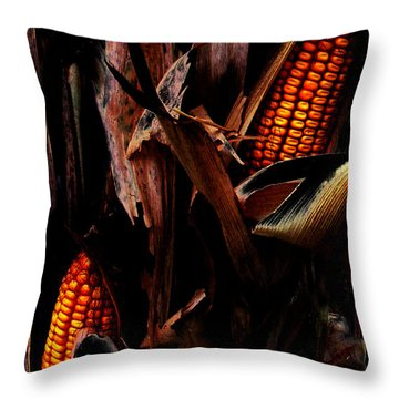 Corn Stalks Throw Pillow by Rachel Christine Nowicki