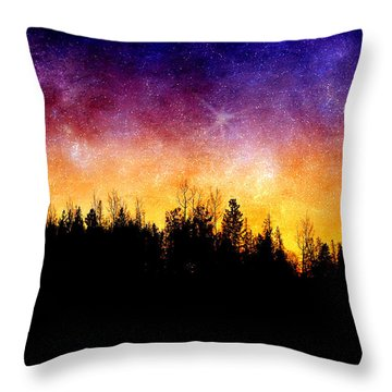 Cosmic Night Throw Pillow by Ellen Heaverlo