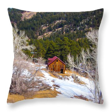 Throw Pillow featuring the photograph Country Barn by Shannon Harrington