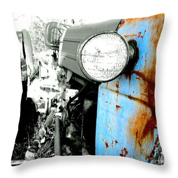 Throw Pillow featuring the photograph Country Brushed by Amy Sorrell