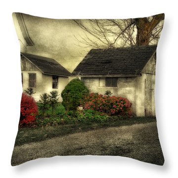 Throw Pillow featuring the photograph Country Charm by Mary Timman