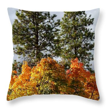Country Color 24 Throw Pillow by Will Borden
