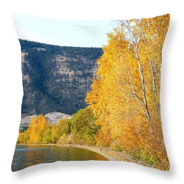Country Color 6 Throw Pillow