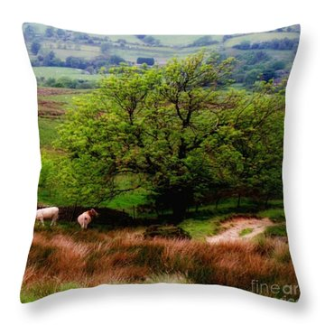 Country File Throw Pillow by Isabella F Abbie Shores FRSA