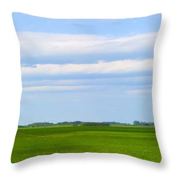 Country Grain Elevator Panoramic Throw Pillow by Corey Hochachka