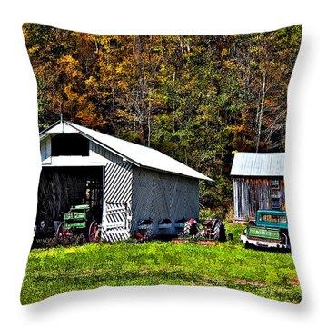 Country Life Throw Pillow by Steve Harrington