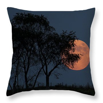 Country Moon  Throw Pillow by Betsy Knapp