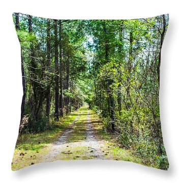Throw Pillow featuring the photograph Country Path by Shannon Harrington