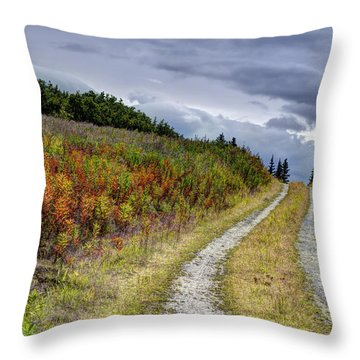 Throw Pillow featuring the photograph Country Road In Fall by Michele Cornelius