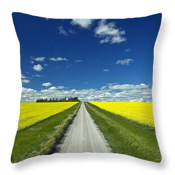 Country Road With Blooming Canola Throw Pillow by Dave Reede