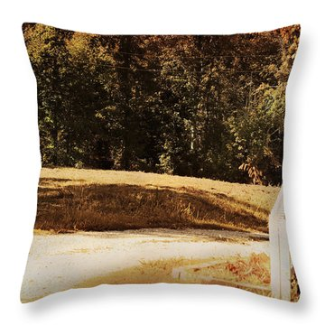 Country Welcome Landscape Throw Pillow by Jai Johnson