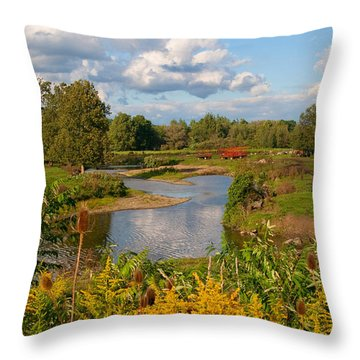 Throw Pillow featuring the photograph Countryside by Cindy Haggerty