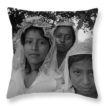 Countryside Confirmation Throw Pillow by Michael Mogensen