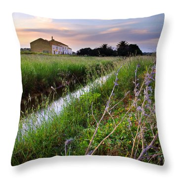 Countryside Landscape Throw Pillow by Carlos Caetano
