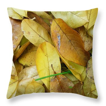 Covering The Green Throw Pillow by Trish Hale