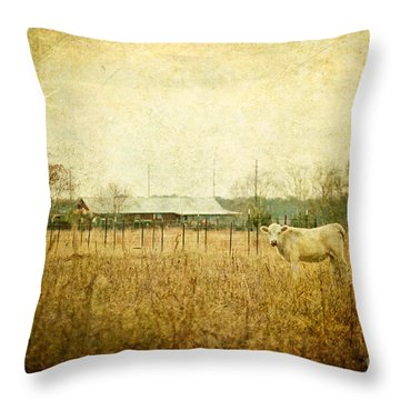 Cow Pasture Throw Pillow by Joan McCool