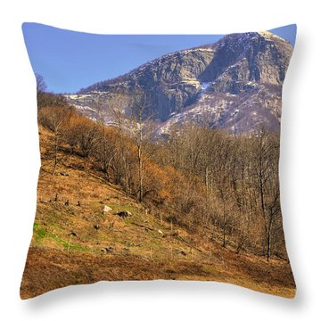 Cowhouse And Snow-capped Mountain Throw Pillow by Mats Silvan