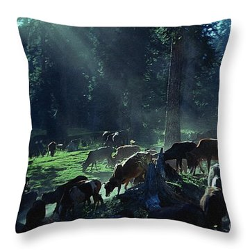 Cows Come Home Throw Pillow