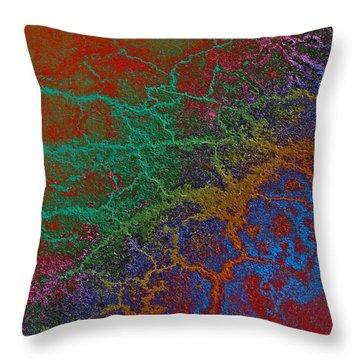 Throw Pillow featuring the photograph Cracks by David Pantuso