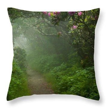 Craggy Path 2 Throw Pillow by Joye Ardyn Durham