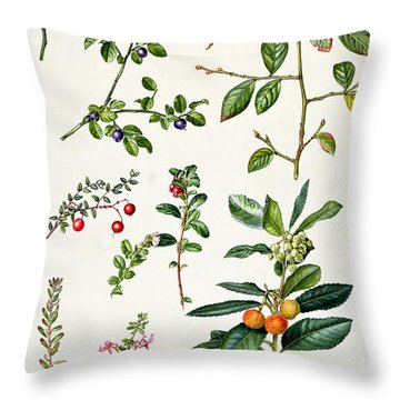 Cranberry And Other Berries Throw Pillow