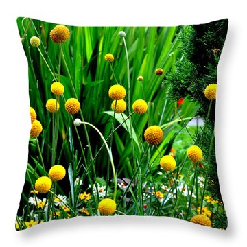 Throw Pillow featuring the photograph Craspedia by Tanya  Searcy