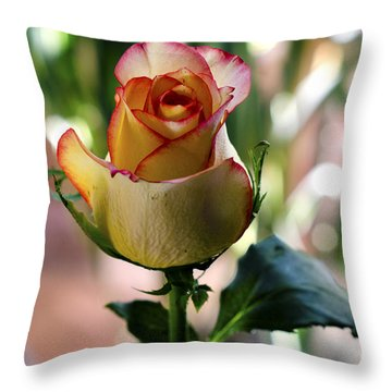 Creation Throw Pillow by Pravine Chester