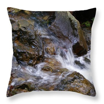 Throw Pillow featuring the photograph Creek Scene On Mt Tamalpais by Ben Upham III