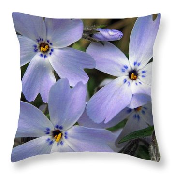 Creeping Phlox Throw Pillow by J McCombie