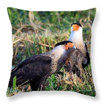 Crested Caracara With Rabbit Throw Pillow