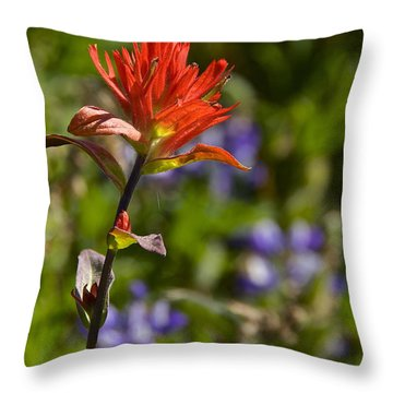 Crimson Paintbrush Throw Pillow by Sean Griffin