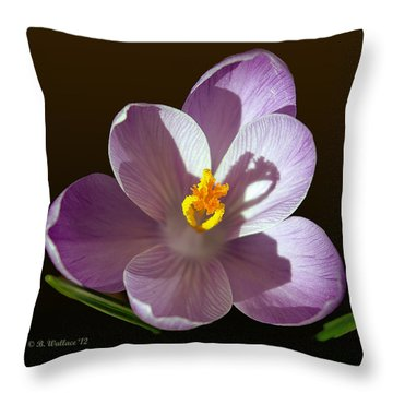 Crocus In Full Bloom Throw Pillow by Brian Wallace
