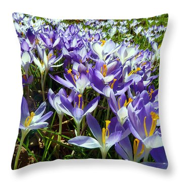 Throw Pillow featuring the photograph Crocuses by Janice Drew