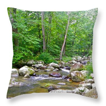 Throw Pillow featuring the photograph Crooked Creek by Eve Spring