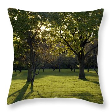 Cross In The Trees Throw Pillow by John Bowers